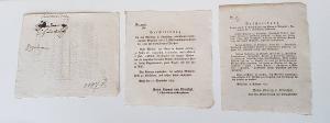 Lilienthal, Anton Krametz von, Polizeidirektor, bzw. in Vertretung Bajardi, k.k. Rath. Steckbriefe (34 Stück) von Deserteuren.