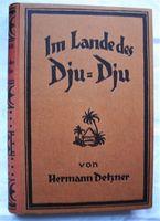 Detzner, Hermann. Im Lande des Dju-Dju.